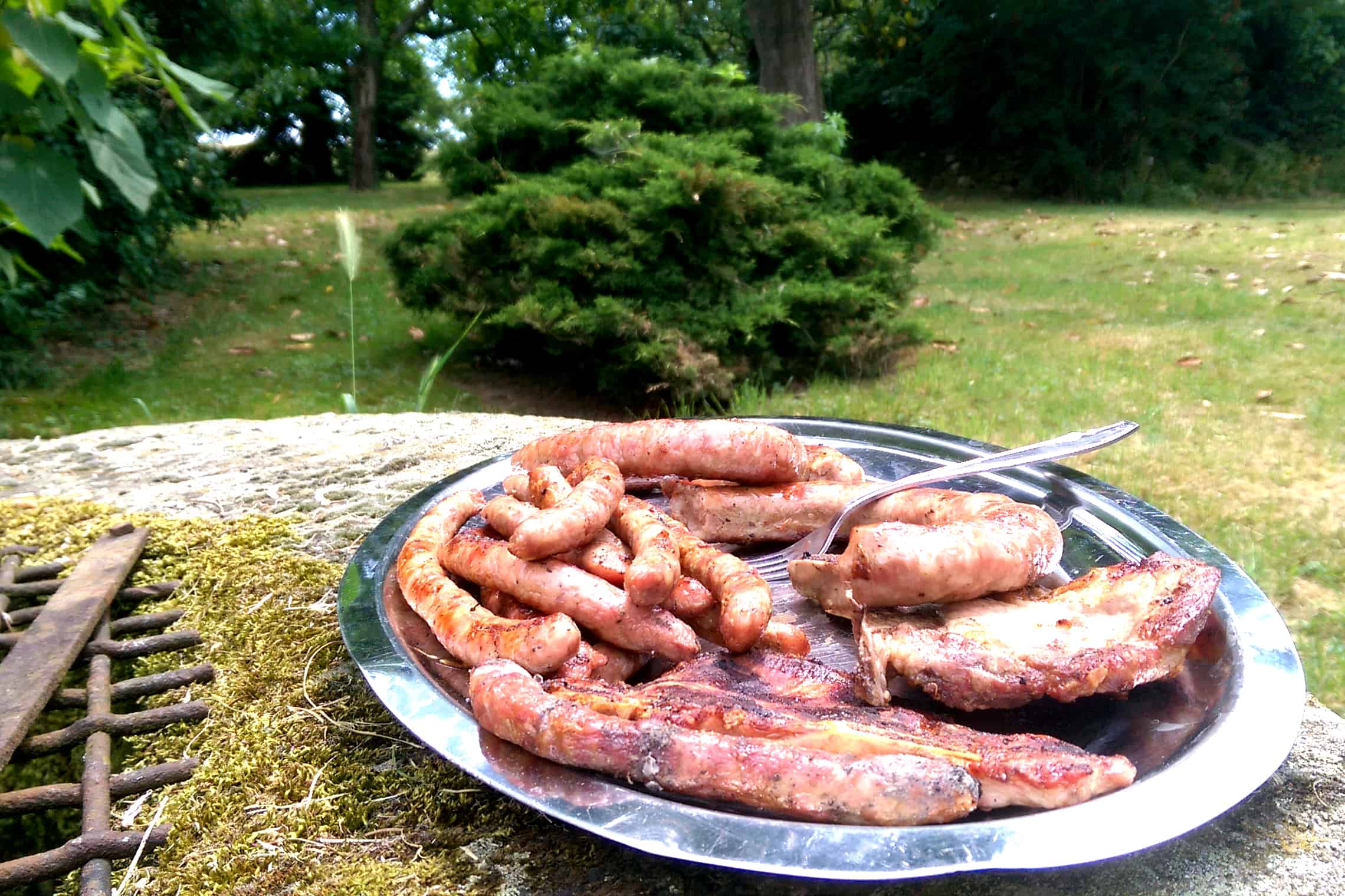 Capadau Organic Pork Farm - Pork sausages, steaks and chops ready to try!