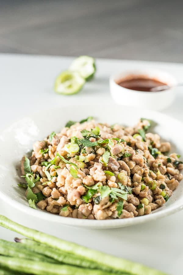 Laotian chicken salad lao larb gai wandercooks laotian chicken salad lao larb gai a fresh zesty salad filled with forumfinder Image collections