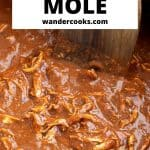 Big pan of chocolate chicken mole sauce.