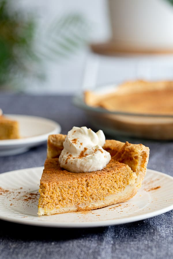 Slice of pumpkin pie with coconut on place, with second slice and rest of pie in background.