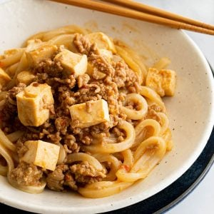 A close up image of Japanese mapo tofu udon noodles.