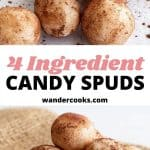Coconut candy spuds coated in cocoa.