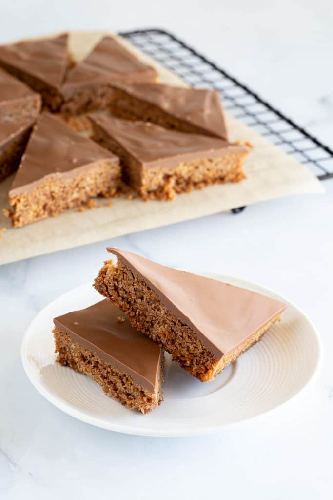 Two slices of chocolate coconut slice.
