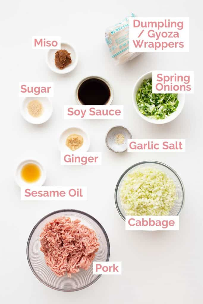 Ingredients laid out for Japanese gyoza dumplings.