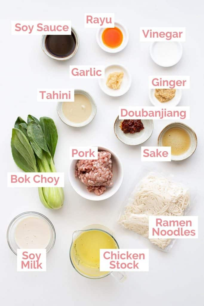 Ingredients laid out for tantanmen ramen.