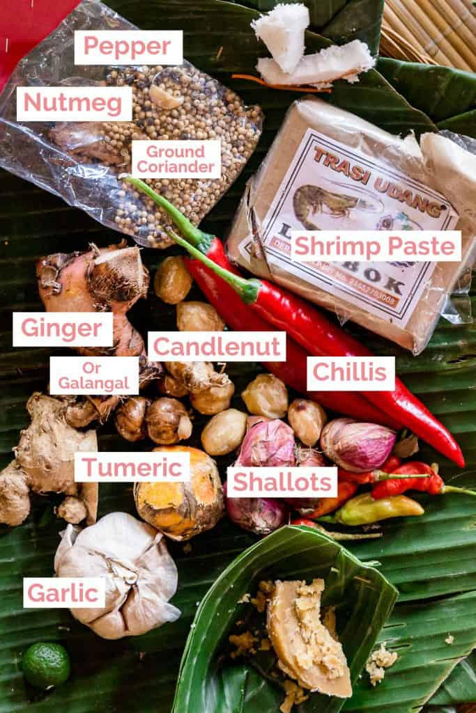 Ingredients laid out for bumbu Bali spice paste.