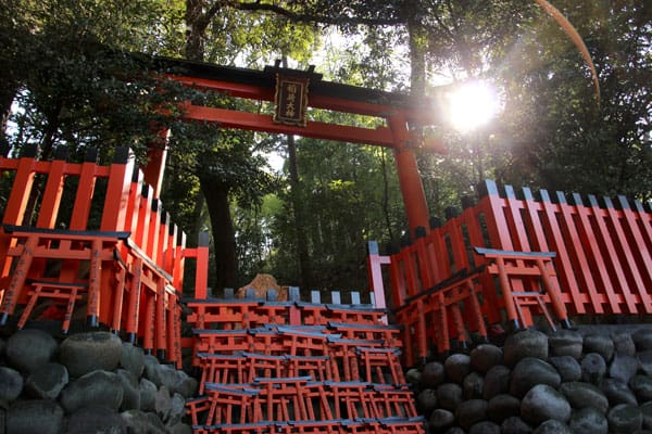 Japanese Torii gate with smaller torii gates in the foreground.