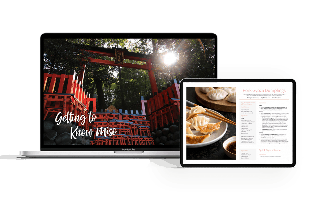 Mockups of ebook on laptop and ipad.