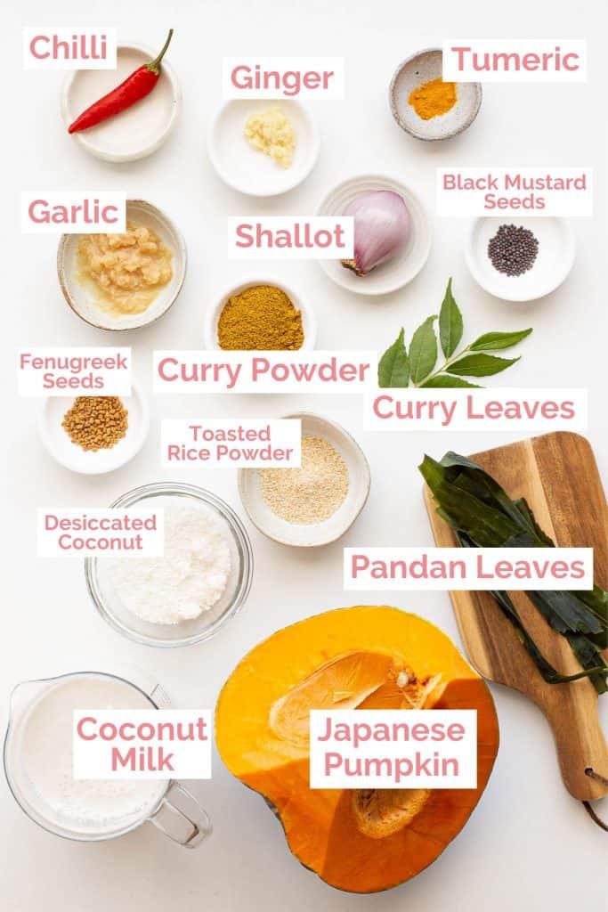 Ingredients laid out to make wattakka kalu pol.