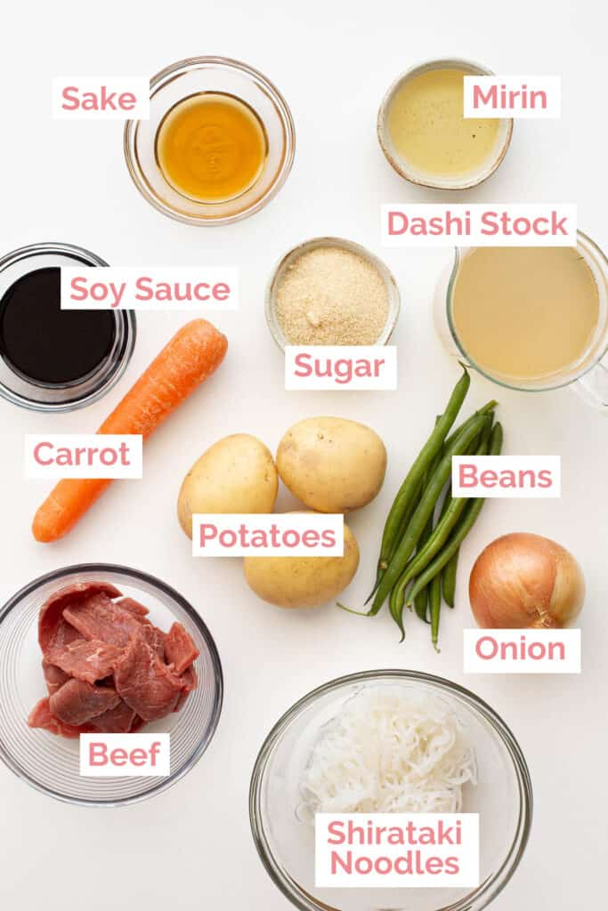 Ingredients laid out to make Nikujaga.