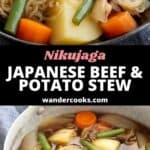 Saucepan and bowl filled with Japanese nikujaga.